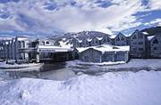 Aava Hotel Whistler at Independent Ski Links