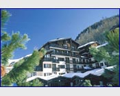 Apartment Les Hauts de Rogoney at Independent Ski Links